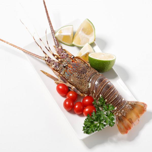 野生大龍蝦(200-250g/包)