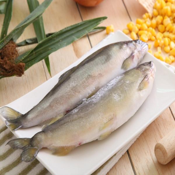 特選超爆卵母香魚(8-11尾/1000g/包)
