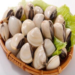 越南白玉文蛤(500g/包)