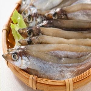 黃金柳葉魚