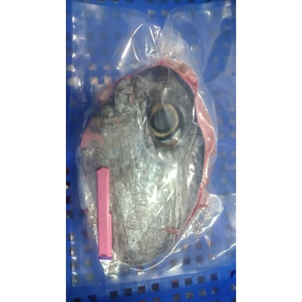 黑鮪魚眼睛原物料